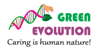 logo footer green evolution